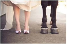 I'd love to add horses to the wedding shoot, just not sure how practical it would be...