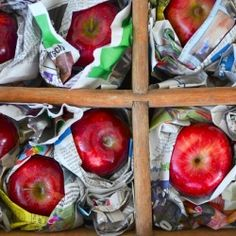 It's APPLE week at the Nest and we are talking about the best ways to manage your fruit trees NOW for a good harvest come fall! Trick #1? YOU NEED A VASE!  via Amy Renea
