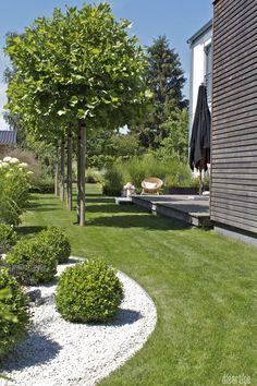 dieartigeBLOG - Sommergarten mit Schatten von Platanen, Buchs, Ballhortensien, Gräsern
