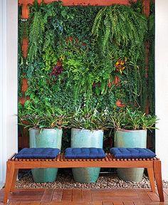 A varanda deveria ser tropical. A paisagista Juliana Freitas a integrou com a sala. O nicho onde ficava a pia da churrasqueira foi transformado em um jardim vertical, feito com blocos de cerâmica com bromélias, samambaias, columeias e asplênios