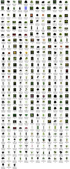Succulent identification chart  growing info, climate zones