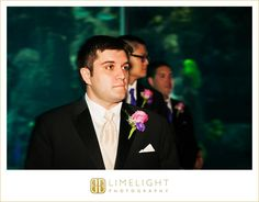 FLORIDA AQUARIUM, www.stepintothelimelight.com, wedding, wedding photography, groom, wedding day, aquarium wedding, portrait, lace, wedding dress, Tampa, Florida, Florida wedding
