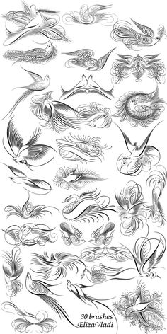 Free Brushes (ABR): Bird of Happiness by ~ElizaVladi