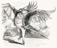 """""""I am,"""" the stranger said, """"the great poet Katogan.""""  J-J. Grandville, from Vie privée et publique des animaux (Public and Private Life of Animals), under the direction of P. J. Stahl, Paris, 1867."""