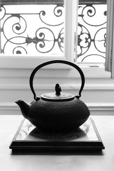 Japanese iron kettle. Wow! I own one exactly the same. It really is beautiful.
