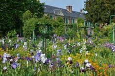 Monet's garden Irises  - giverny-impression.com