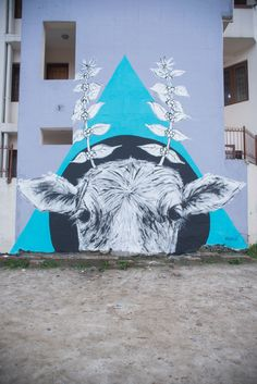 Street Art Floods Nepal With Color - http://www.nytimes.com/2014/12/04/arts/international/street-art-floods-nepal-with-color.html?_r=0