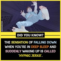 Have you ever noticed Hypnic Jerks? - All the Interesting Information You're Wondering Here True Interesting Facts, Interesting Facts About World, Intresting Facts, Psychology Fun Facts, Psychology Says, Gernal Knowledge, General Knowledge Facts, Wow Facts, Real Facts