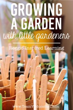 Growing a Garden with little gardeners. Embracing the Reggio Emilia Approach to learning by engaging our children's interests - dirt! Check out how we grew these gorgeous plants for our kitchen garden. Growing a Garden wit Play Based Learning, Learning Through Play, Kids Learning, Learning Place, Reggio Emilia Classroom, Reggio Inspired Classrooms, Reggio Emilia Approach, Infant Lesson Plans, Family Day Care