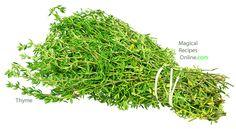 Thyme herbal magic