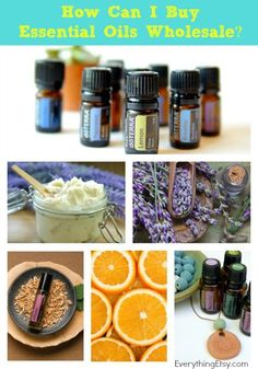 How Can I Start Buying doTERRA Essential Oils Wholesale? {Plus 2 Free Ebooks!} | Everything Etsy | Bloglovin'