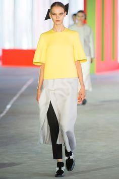 Roksanda Spring 2014 Ready-to-Wear Fashion Show