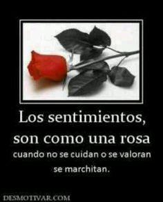 Tristeza...:
