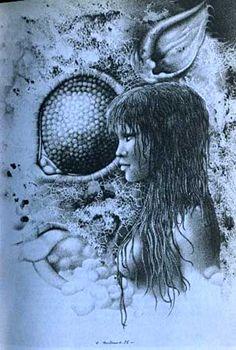 raymond bertrand art - Google Search