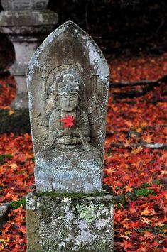 Chakra Racine : Je suis. Je me rattache à la terre. J'assure ma survie, ma sécurité. J'ai de la force. Je suis stable, sans peur. Je suis le lien avec ma famille. Entsu-ji temple, Kyoto, Japan