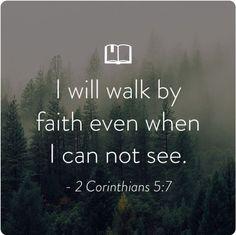 Walk with him !