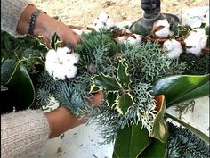 Natale con Csaba - YouTube Christmas Wreaths, Xmas, Natural Christmas, Poinsettia, Holiday Decor, Plants, Handmade, Tutorial, Video