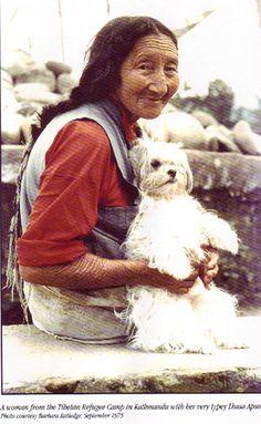 Tibetan woman and a lhasa apso