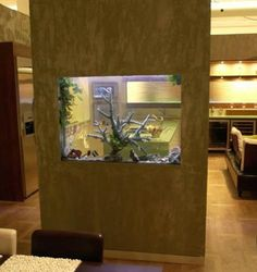 feng shui interior design - quarium, Fish aquariums and Feng shui on Pinterest