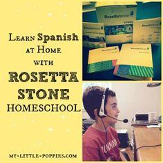 rosetta stone, homeschool, language learning, home education, homeschooler, homeschooling curriculum