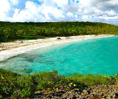 Vieques, I live here and it's absolutely GORGEOUS!