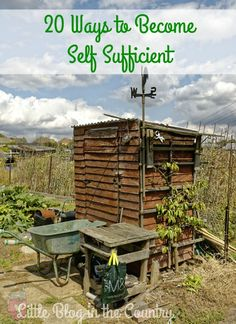 Ways to become self sufficient.