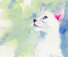 Siamese Watercolor Pictures by Rachel Parker - AmO Images - AmO Images Watercolor Pictures, Watercolor Cat, Watercolor Animals, Watercolor Paintings, Cat Paintings, Watercolors, Rachel Parker, Cat Sketch, White Cats