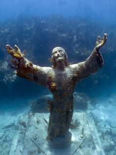 Christ of the Abyss in Key Largo, FL. Went diving here for my senior project!