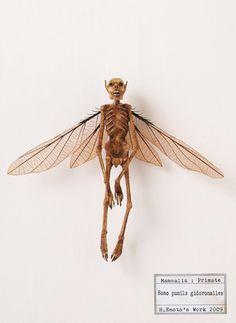 Weird Creatures, Fantasy Creatures, Mythical Creatures, Do Fairies Exist, Alien Photos, Horror Decor, Aliens And Ufos, Animal Bones, Bizarre
