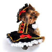 10 of the best pet costumes for Your Halloween hound #halloweencostumeideas #costumeideas #halloween #petcostumes #pets #dogcostumes