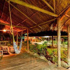 Si buscas aventura contacto con la naturaleza la flora y la fauna tenemos un paquete turístico para conocer el #DeltaDelOrinoco que te va a encantar. Si quieres conocer más al respecto déjanos tu correo aquí   http://ift.tt/1iANcOy  #ViajoLuegoExisto  #trekking #conocerescuidar #Xperiencias  #DeltaDelOrinoco DeltaAmacuro #instatraveling #mochileros #excursion #Venezuela #trekkingvzla #backpacking #backpackingaddicts #visitsouthamerica