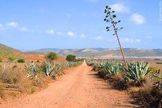 Randonnée Cabo de Gata, Tabernas - Désert d'Espagne   La Balaguère
