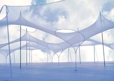 Form-finding study for the support of textile membranes and rope nets, by 2015 Pritzker laureate Frei Otto