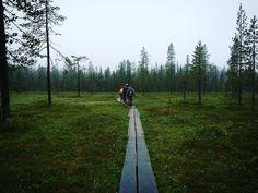 Ikuinen jälki kansallispuistossa – ja myös minun käsistäni – Rinkkaputki