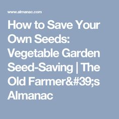 How to Save Your Own Seeds: Vegetable Garden Seed-Saving | The Old Farmer's Almanac