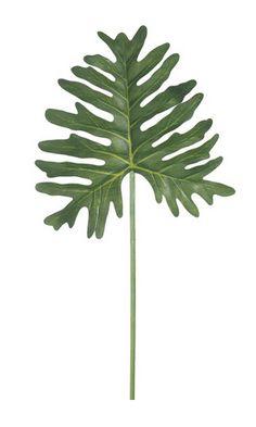 """29"""" artificial/permanent philodendron stems  floralemporiumonline.com  Floral Emporium 3900 S Dixie Hwy West Palm Beach, FL 33405"""