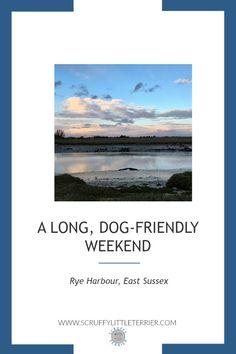 A long, dog-friendly