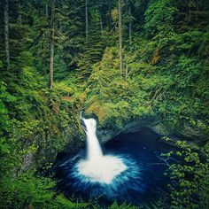 If you've ever seen a postcard or calendar from Oregon, you have more than likely seen a picture of Punch Bowl Falls. It's one of the most photographed waterfalls in the world, and for good reason. This stunning fall can be found via the Eagle Creek Trail in the Columbia River Gorge. There are fo