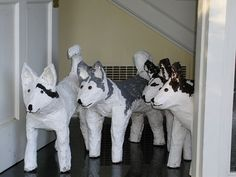 Real huskies  (actually, the one on the far left is a paper mache bull terrier trying to pass)
