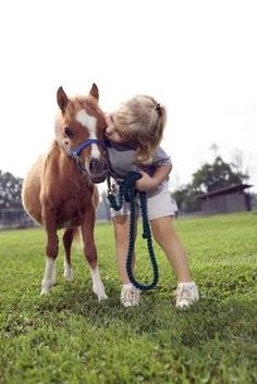Facts on Miniature Horses