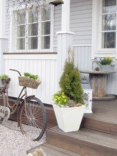 kukat,kuisti,piha,terassi