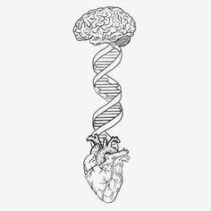 New drawing ideas quotes inspiration tattoos Ideas Henna Motive, Brain Art, Brain Drawing, Art Du Croquis, Medical Art, Anatomy Art, Art Drawings Sketches, Hipster Drawings, Tattoo Inspiration