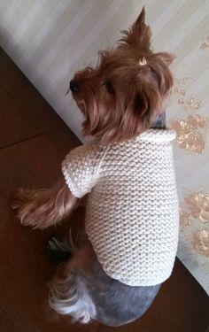 Large Medium Sweater Handmade Dog Clothing Pet от LyudmilaHandmade Dog Sweater Pattern, Knit Dog Sweater, Dog Pattern, Hand Knitted Sweaters, Dog Sweaters, Pet Clothes, Dog Clothing, Yorky, Dog Winter Coat