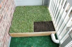 DIY dog grass box! Easy to make and less than $40 at Home ...