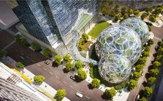 seattle approves amazon's biodome headquarters by NBBJ