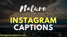 Looking for nature captions for Instagram for a photo? Here we have gathered inspirational green nature captions for Instagram pictures.