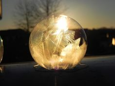 These Frozen Soap Bubbles Will Make You Want To Go Outside | Bored Panda