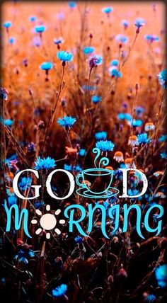 Good Morning Greeting Cards, Good Morning Greetings, Good Morning Images, Good Morning Quotes, Morning Board, Art Photography, Friday, Neon Signs, Wallpaper