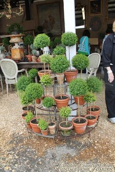 Creative Country Mom's: Country Living Fair Nashville 2015 - Day 2 - Garden Inspiration