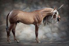 EMK Horses uploaded this image to 'Kilimanjaro'.  See the album on Photobucket.